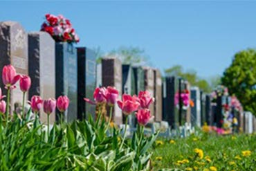 CEMETERY-A Sanctuary For The Living